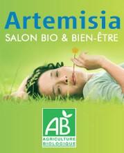 artemisia affiche-1.jpg